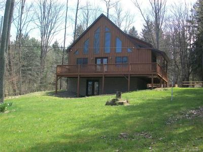 Allegany County, Cattaraugus County Single Family Home A-Active: 8714 County Road 49 Road