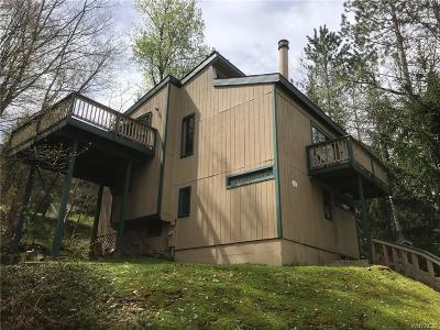 Ellicottville Single Family Home A-Active: 4 Holimont Avenue
