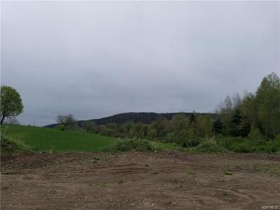 Ellicottville Residential Lots & Land A-Active: 41-4a Mill Street