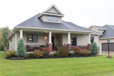 Aurora Single Family Home A-Active: 4650 Martingale Court #4650