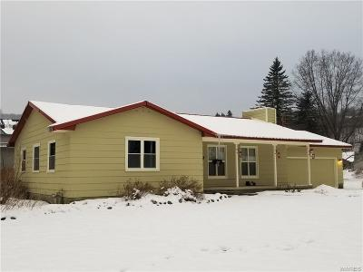 Ellicottville Single Family Home A-Active: 6517 Donlen Drive