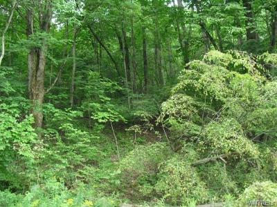 Allegany County, Cattaraugus County Residential Lots & Land A-Active: Lot B Rohr Hill Road