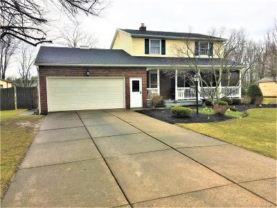 Wheatfield Single Family Home A-Active: 2975 Krueger Road