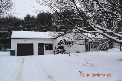 Single Family Home A-Active: 12770 Creek (Route 39) Road