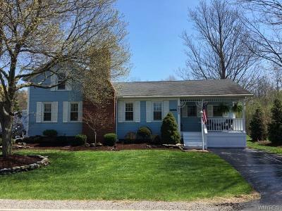 Niagara County Single Family Home A-Active: 6625 Aiken Road