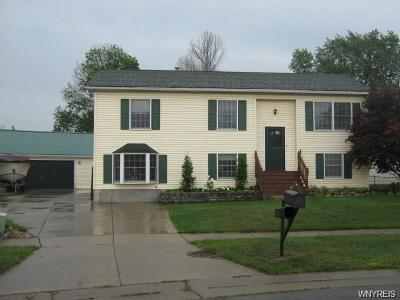 West Seneca Single Family Home A-Active: 7 Cathedral Court