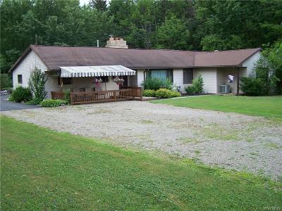 Colden Single Family Home A-Active: 8761 Heath Road