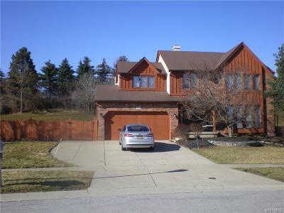West Seneca Single Family Home A-Active: 73 Larsen Lane