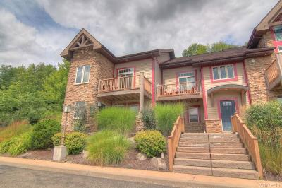 Ellicottville Condo/Townhouse A-Active: 1 Mountainview Upper