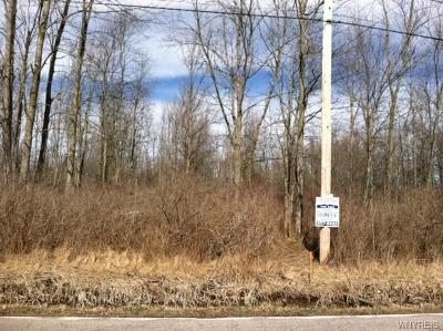 Amherst Residential Lots & Land P-Pending Sale: 160 Smith Road