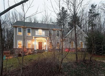 Ellicottville Single Family Home A-Active: 6164 Cotter Road