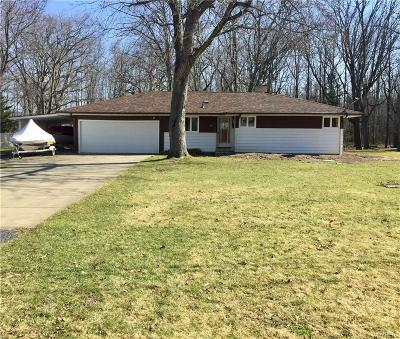 Grand Island Single Family Home A-Active: 767 Kirkwood Drive