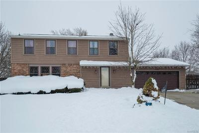 Hamburg Single Family Home A-Active: 5097 Lower Court