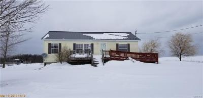 Single Family Home A-Active: 10350 Reed Road