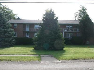 Arcade Multi Family 5+ A-Active: 7821 Countyline Road