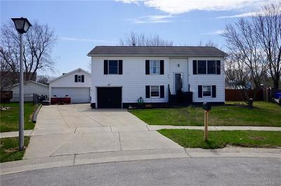 West Seneca Single Family Home A-Active: 8 Cathedral Court