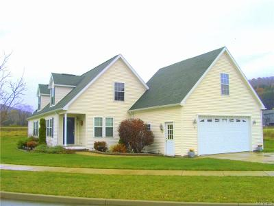 Ellicottville Single Family Home A-Active: 2 Elk Creek Drive