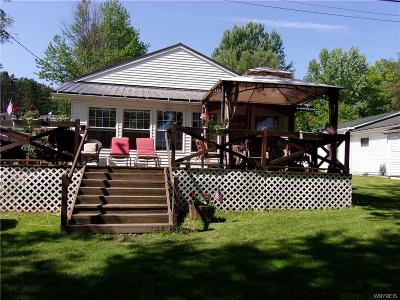 Allegany County, Cattaraugus County Single Family Home A-Active: 8045 Ryan Road