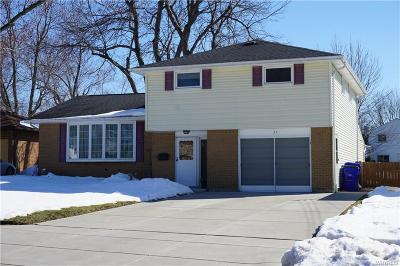 West Seneca Single Family Home A-Active: 37 Marlin Drive