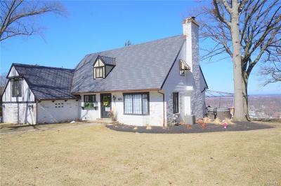 Lewiston Single Family Home A-Active: 623 Mountain View Drive