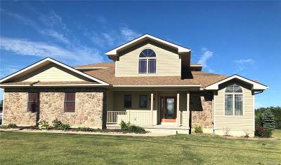 Erie County Single Family Home A-Active: 169 Siebert Road