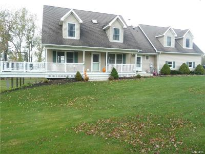 Genesee County Single Family Home A-Active: 11004 Alex -darien Townline Road