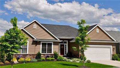 Erie County Single Family Home A-Active: 8907 Willyoungs Overlook