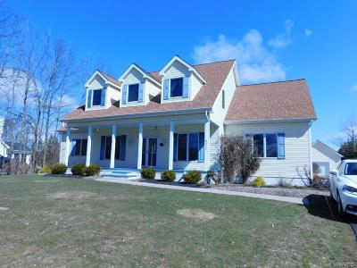 Erie County Single Family Home A-Active: 6335 Conner Road