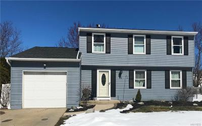 Erie County Single Family Home A-Active: 28 Klein Road