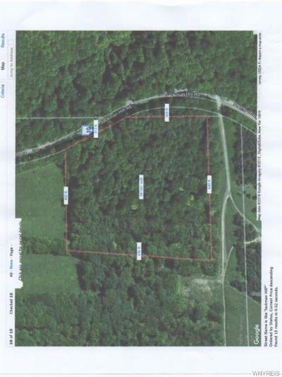Ellicottville Residential Lots & Land A-Active: Lot Jackman Hill Road
