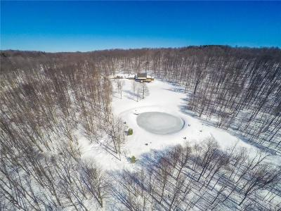 Ellicottville Single Family Home A-Active: 6545 Woodard Road