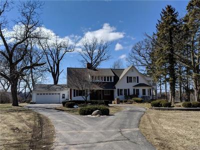 Lewiston Single Family Home A-Active: 4720 Lower River Road