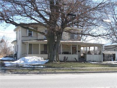 Genesee County Multi Family 2-4 A-Active: 92 Lake Street