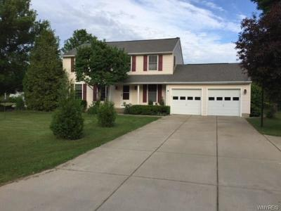 Orchard Park Single Family Home A-Active: 44 Rolling Hills Drive