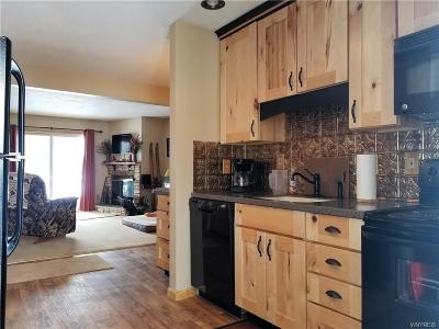Ellicottville Condo/Townhouse A-Active: 73 Wildflower Apts