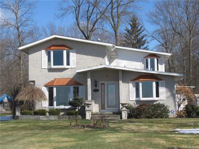 Grand Island Single Family Home A-Active: 3453 West River Road