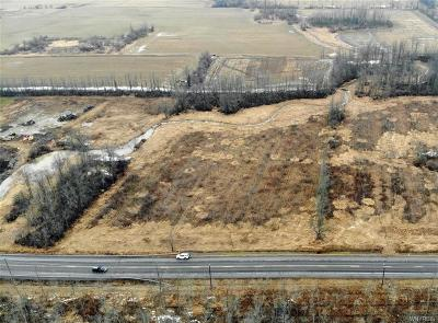 Niagara County Residential Lots & Land A-Active: V/L Mapleton Road