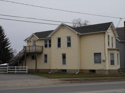 Genesee County Multi Family 2-4 A-Active: 459 Ellicott Street