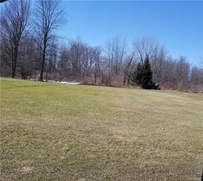 Niagara County Residential Lots & Land A-Active: V/L Nash Road West