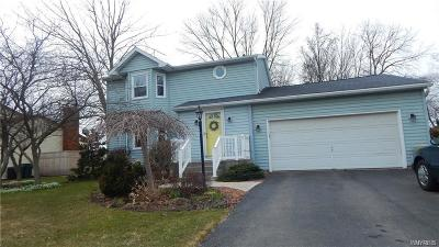 Wheatfield Single Family Home A-Active: 7274 Norman Road