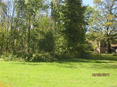 Niagara County Residential Lots & Land A-Active: 4338 Lake Avenue