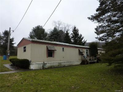 Portville Single Family Home A-Active: 1826 Route 305