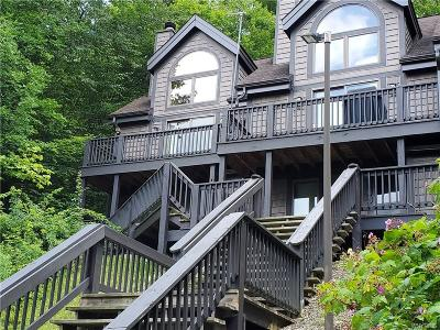 Ellicottville Condo/Townhouse A-Active: 62 Valley View Rd-The Woods
