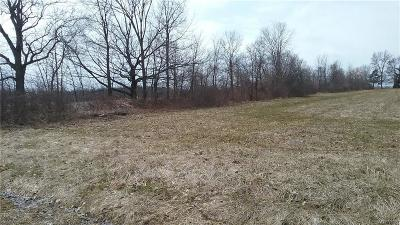 Niagara County Residential Lots & Land A-Active: V/L Ernest Road