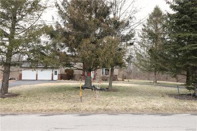 Orleans County, Monroe County, Niagara County, Erie County Single Family Home A-Active: 9560 Tonawanda Creek Road North