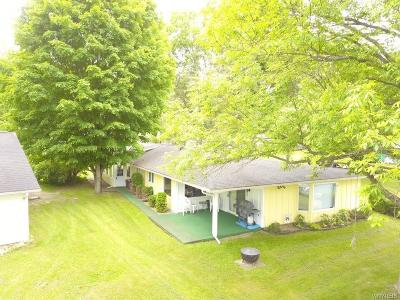 Allegany County, Cattaraugus County Single Family Home A-Active: 8086 County Road 49 #C