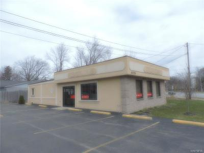Evans NY Commercial A-Active: $249,000