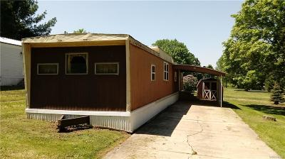 Arcade Single Family Home For Sale: 6070 Michigan Lot #15 Road