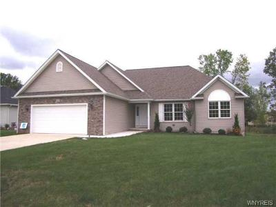 Aurora Single Family Home A-Active: Blakeley Road