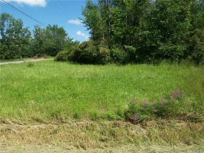 Niagara County Residential Lots & Land A-Active: 5644 Ridge Road